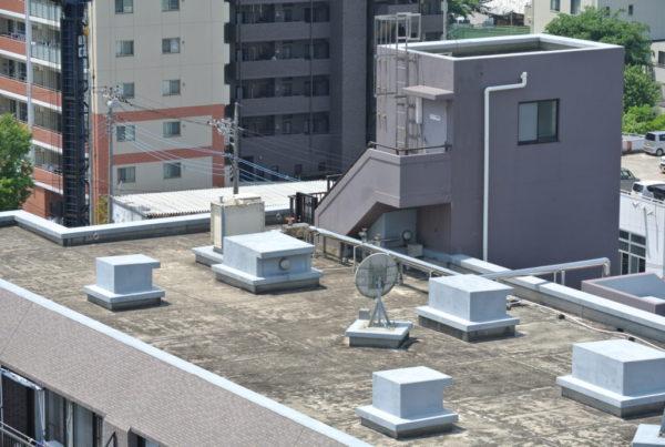 屋上緑化と防水工事の関係